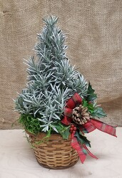 HOLIDAY TREE from Beck's Flower Shop & Gardens, in Jackson, Michigan