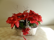 Double Poinsettia from Beck's Flower Shop & Gardens, in Jackson, Michigan