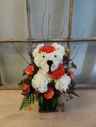 Zombie Dog from Beck's Flower Shop & Gardens, in Jackson, Michigan