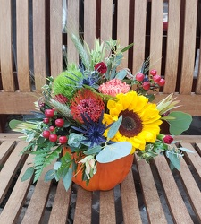 DELUXE PUMPKIN ARRANGEMENT from Beck's Flower Shop & Gardens, in Jackson, Michigan