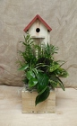Birdhouse Planter from Beck's Flower Shop & Gardens, in Jackson, Michigan