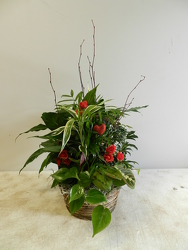 Simple Love Planter from Beck's Flower Shop & Gardens, in Jackson, Michigan
