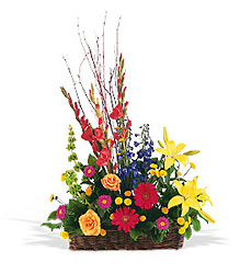 Sunshine Basket from Beck's Flower Shop & Gardens, in Jackson, Michigan