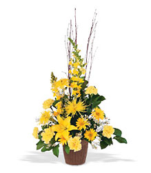 Brighter Blessings Arrangement from Beck's Flower Shop & Gardens, in Jackson, Michigan