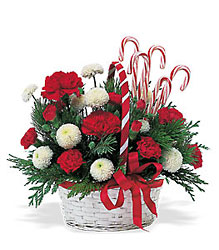 Candy Cane Basket from Beck's Flower Shop & Gardens, in Jackson, Michigan