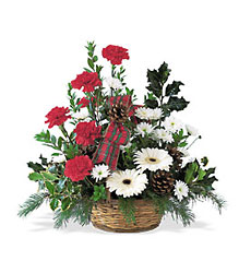 Winter Wonderland Basket from Beck's Flower Shop & Gardens, in Jackson, Michigan